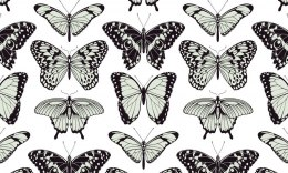 Eco wall wallpaper BUTTERFLY